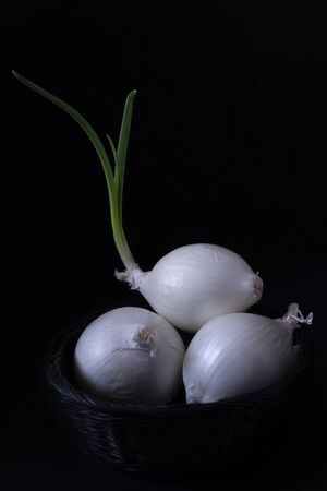 Three onions, one with a beautiful bud, in a black painted wicker basket. Everything on a black background 스톡 콘텐츠