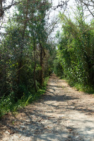 The Sa Roca path leads us to the Es Canal Gran observation tower within the Natural Park of s'Albufera in Mallorca