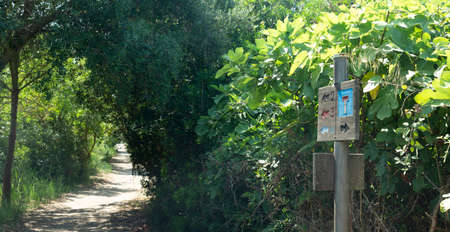 Wooden signage of the different trails that cross the Natural Park of s'Albufera Banco de Imagens