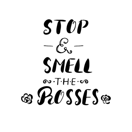 smell: Stop and smell the roses -handdrawn ink brush pen inspirational quote, isolated on white background.