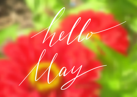Hello May handwriting lettering design isolated on blurred blossoming red bloom. Vector illustration.
