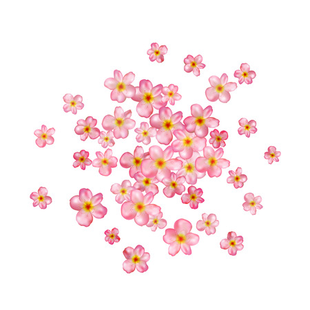 Abstract background with beautiful pink cherry blossom. Vector illustration isolated on a white background.
