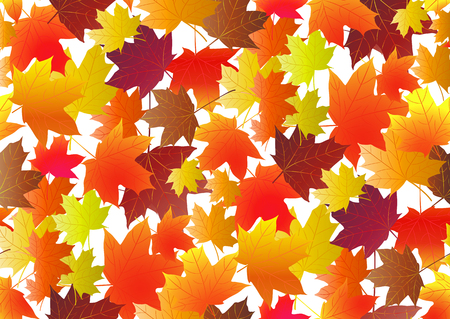 Autumnal pattern with fall maple leaves. Vector illustration Illustration