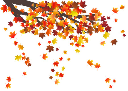 Abstract autumnal background with flying maple leaves. Fall season.