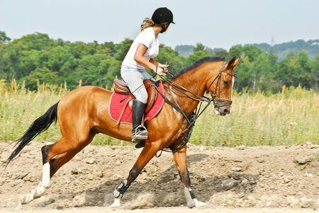 Girl is riding a Akhal-Teke horse Stock Photo