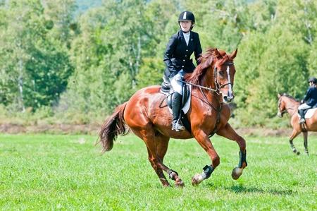 caballo saltando: ARSENEV, Rusia - 03 de septiembre: piloto no identificado en juegos de acción salta caballo de exhibición en la feria de equitación