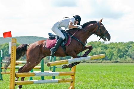salto de valla: ARSENEV, Rusia - 03 de septiembre: jinete con el caballo no identificado compite en los saltos muestran en la feria de equitaci�n