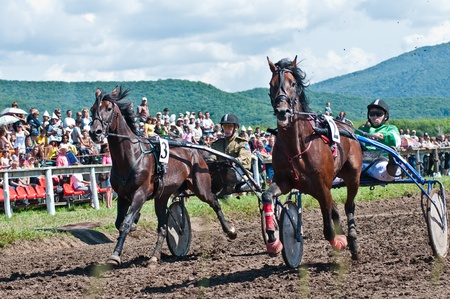 ARSENEV, RUSSIA - SEPTEMBER 03: Unidentified riders with trotters horses competes at the Cup of Governor of the Primorsky Territory, 2011, on Sept 03, 2011 in Arsenev, Russia