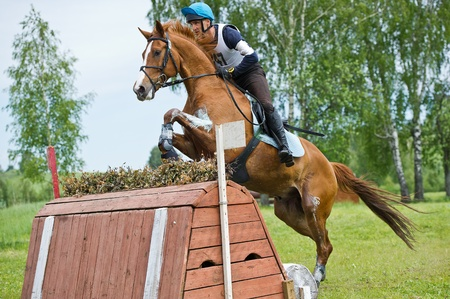 eventing: MOSCOW - JUNE 02  Unidentified rider on horse is overcomes the obstacle at the International Eventing Competition CCI3