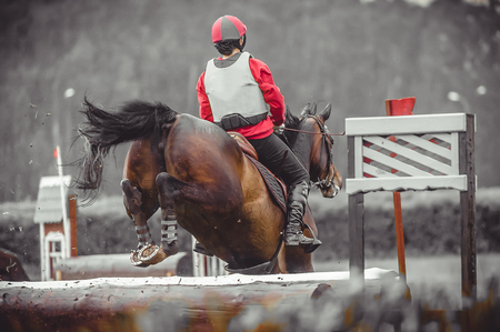 eventing: Young woman jumps a horse during practice on a cross country eventing course, duotone art Stock Photo