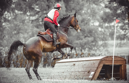 Young woman jumps a horse during practice on a cross country eventing course, duotone art Stock Photo