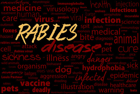 wścieklizna: Rabies this is viral incurable disease of humans and animals. Health care word text block.