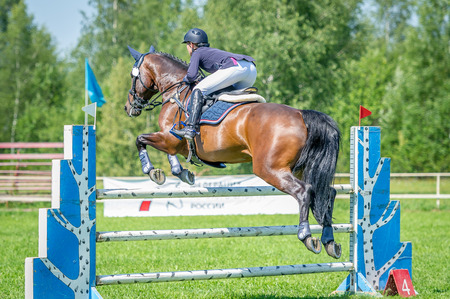 The rider on the bay show jumper horse overcome high obstacles in the arena for show jumping on background blue sky