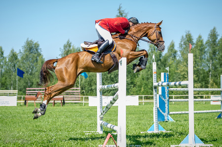 The rider on the red show jumper horse overcome high obstacles in the arena for show jumping on background blue sky