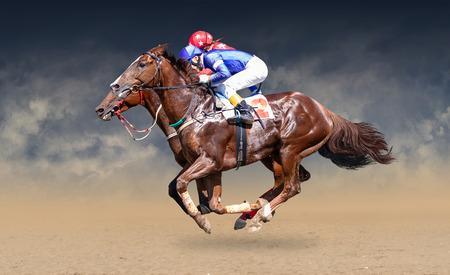 Zwei Rennpferde im harten Wettkampf um die Ziellinie Standard-Bild