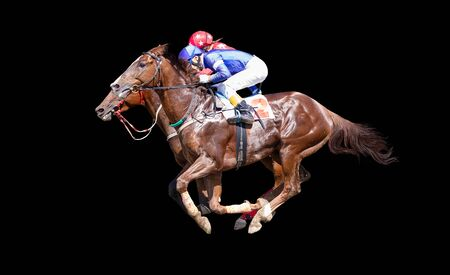 Two racing horses neck to neck in fierce competition for the finish line isolate on black background