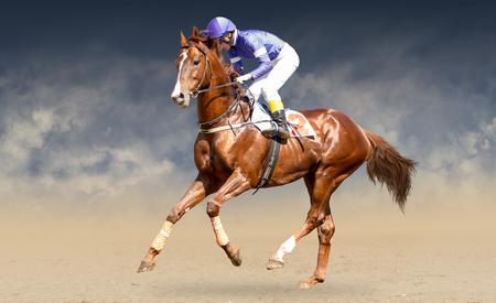 Jokey on a thoroughbred horse runs isolated on black background