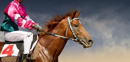 Jokey su un cavallo purosangue viene eseguito isolato su sfondo colorato