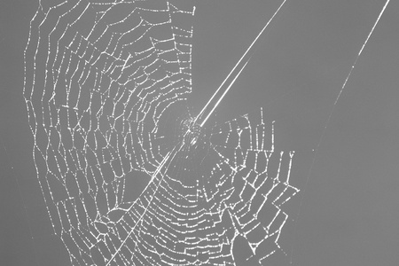 the spider web almost finished