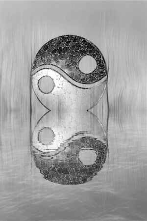 Yin-yang symbol in the forest in lake reflection
