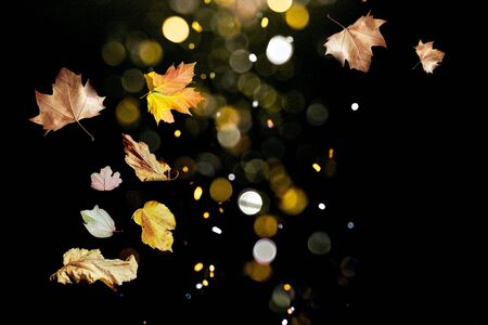 Magic autumn with leaves flying in the bouquet