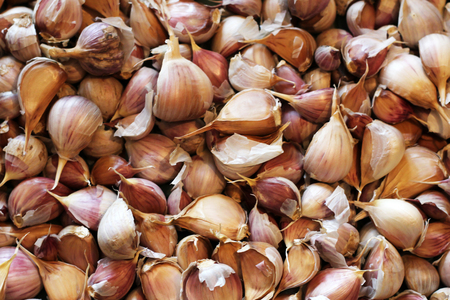 Garlic Allium sativum cloves close up for texture use as background