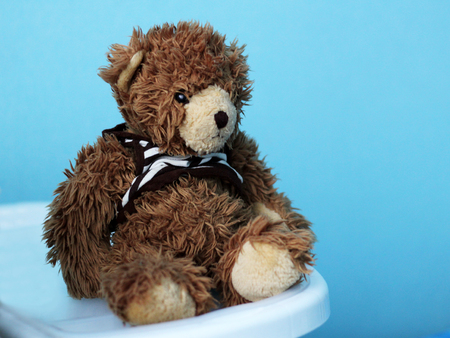 toy teddy bear on blue background, lonely