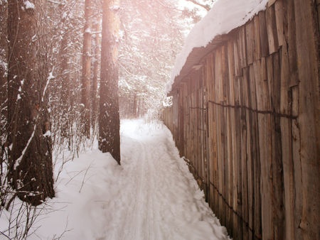 Snowing on a wooden fence, old object, forest 版權商用圖片