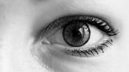 Ojo femenino con lente de contacto gris, macro