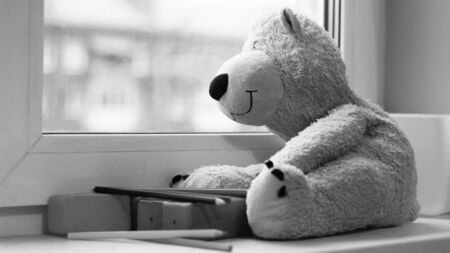 Bear toy sitting by the window, black and white