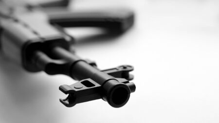 Handgun weapon - crime gun toy so close