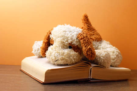 A dog toy and book on orange background, retro