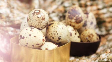 Group of quail eggs, eco food so close