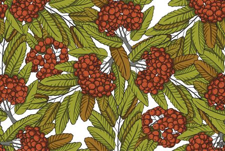 palatable: Seamless pattern of rowanberry with branch and leaves.