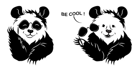 Cool Panda Draws Off Glasses. Stock fotó - 80538543