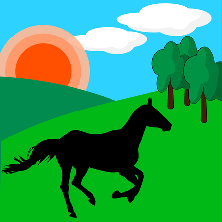 Horse on green meadow in the rolling hills under the sun
