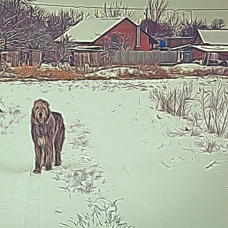 Abstract illustration with a dog and a village house in the background. Rural winter landscape. Irish wolfhound standing on a snowy road and looking forward