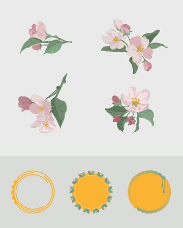 Apple flower branches in different arrangement. Set of blush pink flowers for greeting card design. Round frame emblems.