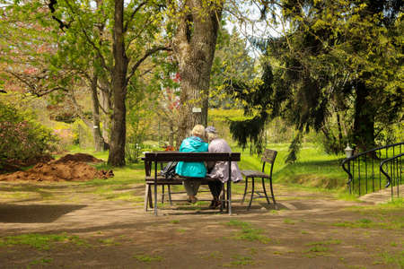 Senior women sit on a park bench with their backs. Old friends have a chat. 免版税图像