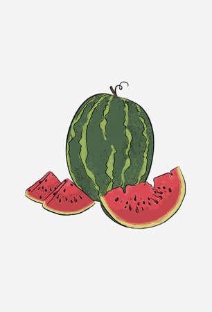Watermelon poster. Watermelon slices, half and quarter. Ripe watermelon vector illustration.