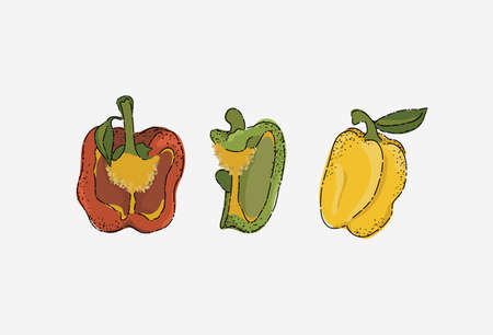 Bell pepper in different colors and shapes. Cross-section of bell pepper. Vegetable set.