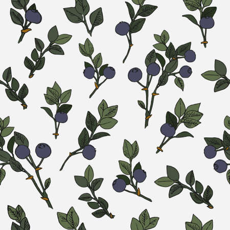 Blueberry branch seamless pattern. Repeating blueberry print. 矢量图像