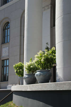 1.08.2020. Riga, Latvia. VEF culture palace. Round porch with white columns and flower pots. 新闻类图片