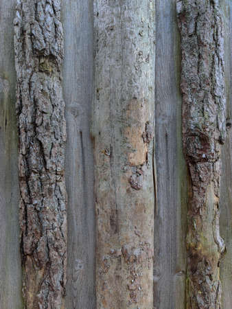 Wall built of untreated wood. Old log texture. Vertical wooden plank background.