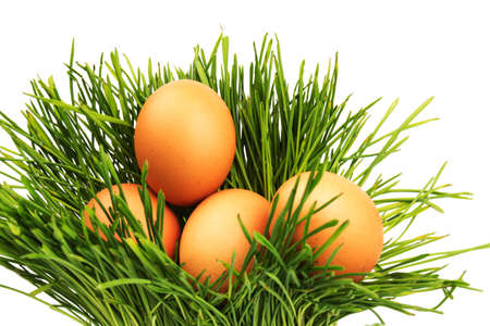 Brown chicken eggs on green grass, isolated on white background. Close-up. Easter concept, space for text. Фото со стока