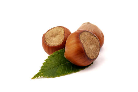 Hazelnuts (Corylus avellana, cobnut, filbert) with hazel leaves on white background. Banque d'images