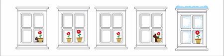windowsill: Window, cat and flower