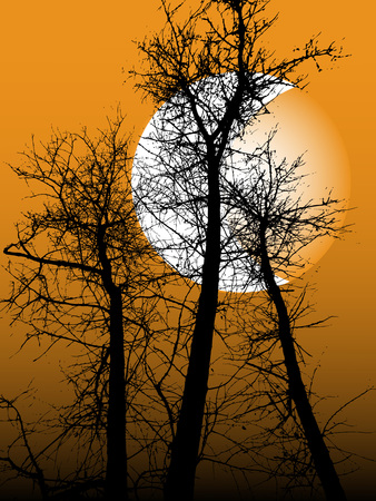Bild von einem schwarzen Silhouette eines Baumes gegen den Nachthimmel mit einem Monat.