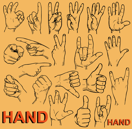 perfectly: Drawing on paper. Image of hands with different gestures. Illustration