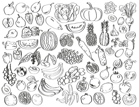 Image of black on a white background drawing of vegetables, fruits and berries.